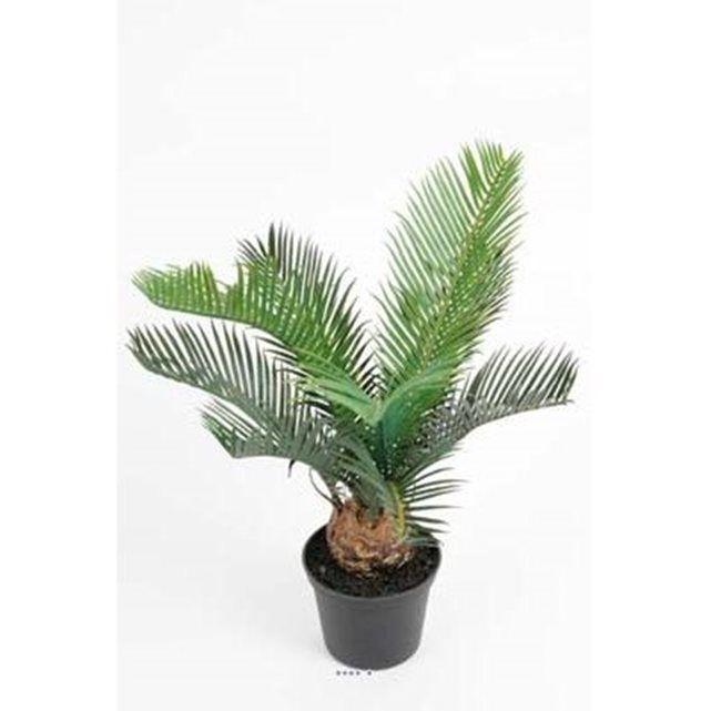 Superbe petit Palmier Cycas artificiel en pot H 35 cm très dense. Pot H 8 cm x D haut 10 cm et D bas 7 cm. Feuillage Plastique largeur de la plante environ 25 cm. Magnifique pied de palmier artificiel. Un chouette produit