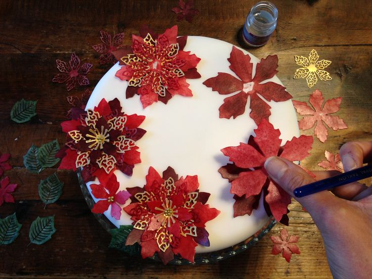 Assembling a poinsettia Christmas cake using Cake Crafting's set of Poinsettia cake dies. You can colour the different layers with alternating shades and build them up using edible glue.