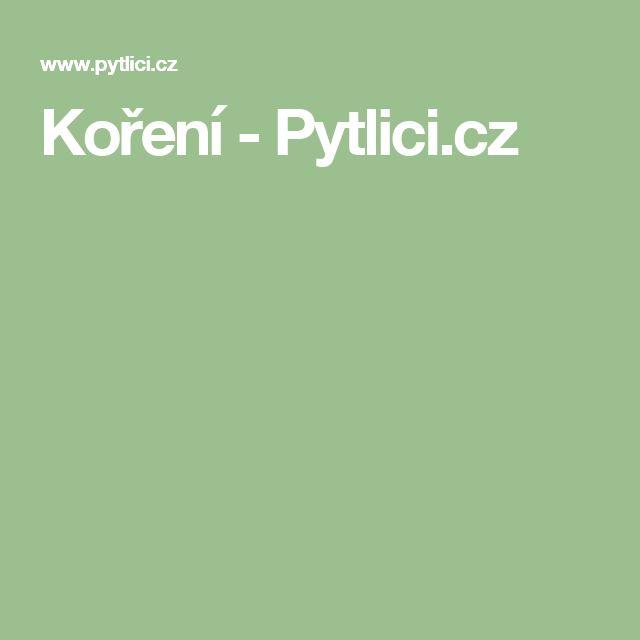 Koření - Pytlici.cz