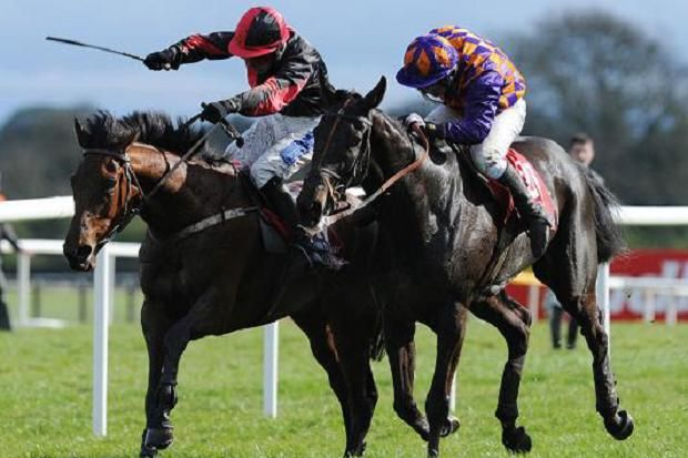 All our free #racing_tips are provided by the #proffesional_tipseters. Get more winners with todays best #Horse_Racing tips from expert tipsters.