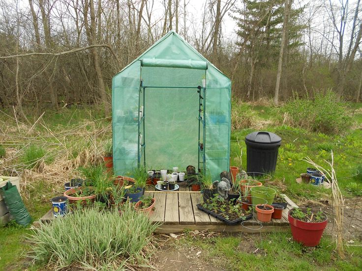 152 best Gardening Homegrown Ideas images on Pinterest Flowers