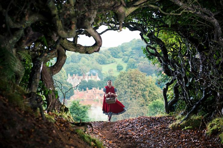 Cine.gr - Τανίες Into the Woods - Τα Μυστικά του Δάσους
