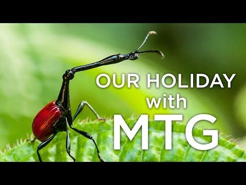 Our holiday with Madagascar Tour Guide - YouTube