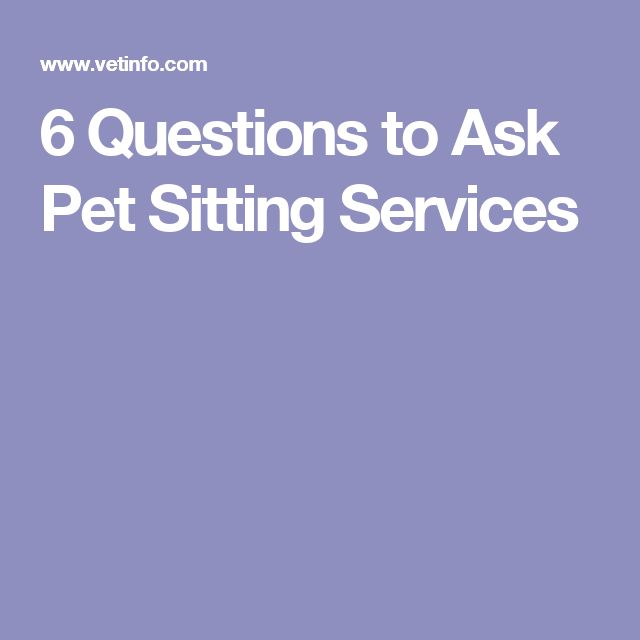 6 Questions to Ask Pet Sitting Services