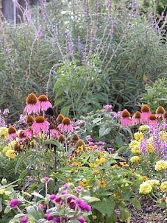 Tales From The Butterfly Garden: Lepidoptera Curious: Start Butterfly  Gardening