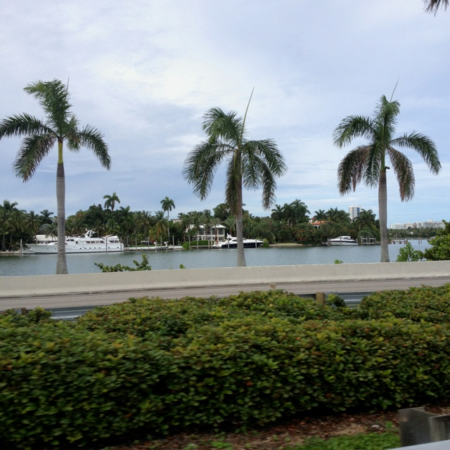 Love driving past Millionaire Row in Miami and dreaming of the day that this is our summer backyard! Www.FatFreeBurger.com: Favorite Places, Millionaire Row, Summer Backyard