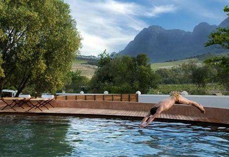 www.sunsafaris.com #Babylonstoren #Farm #Hotel #pool #exterior #winelands #cape #town #franschhoek #south #africa