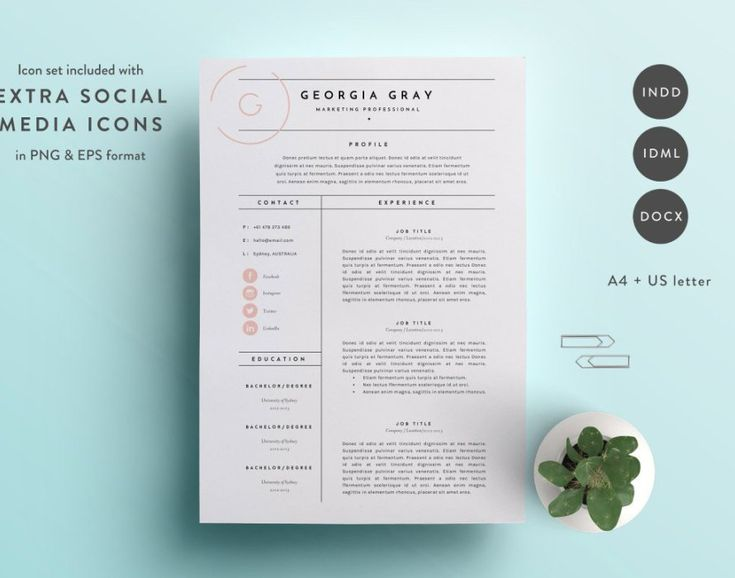 The  Best Cool Resumes Ideas On   Resume Layout