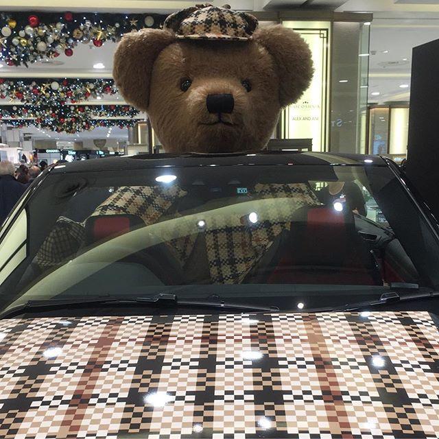 運転手アレック!可愛いなぁ~おっきぃ~ 応募します!よろしくお願い致します @daksjapan #daksテディベアフォトコンテスト #テディベア #daks #alec
