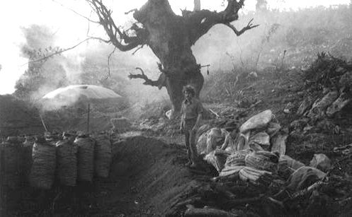 Charcoal-Makers