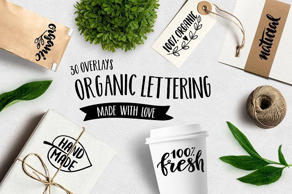 Set of Organic Overlays & Icons by Maria Galybina on @creativemarket