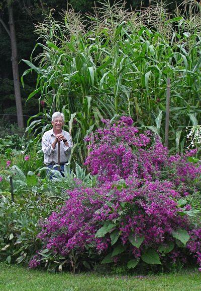 Leslie Land Bill In Corn