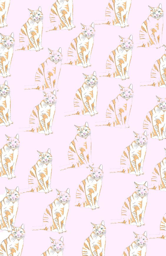 free pattern illustration phone wallpaper to download on the blog ! Illustration by celinelunakim / cute wallpaper / fonds d'écran / phone wallpaper pink cat / cute freebie to download / chat sur fonds rose / fond d'écran mignon