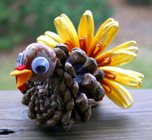 Too cute, have lots of pinecones and acorns in the yard!