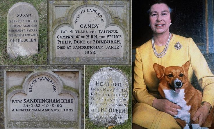 The Queen's Corgi graveyard. Tiny headstones of Royal pets that spent years as 'loyal companions' pictured in quiet corner of Sandringham