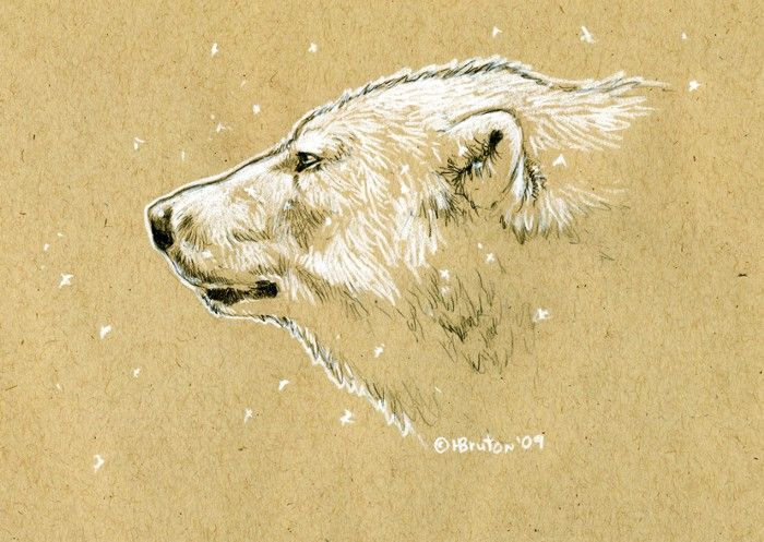 Build a Bear, Build a Memory