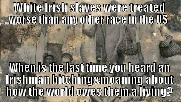 Comparing The Irish To African American Slaves Is Prejudiced, and historically illiterate.