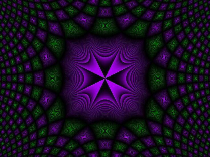 "1000+ images about ""Purple & Green"" together on Pinterest ...
