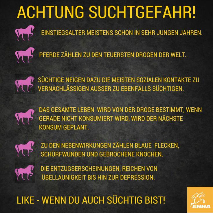 Pferdesprüche & Pferdefutter-emma-pferdefuttershop(5)