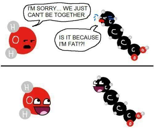 I love science humor!