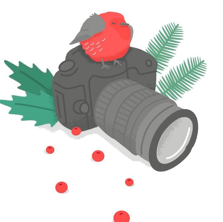 #illustration of #bird #camera