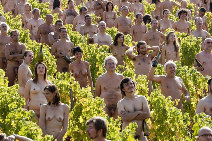 Naked volunteers pose for U.S. photographer Spencer Tunick in a vineyard of Pouilly-Fuisse in Fuisse on October 3, 2009.