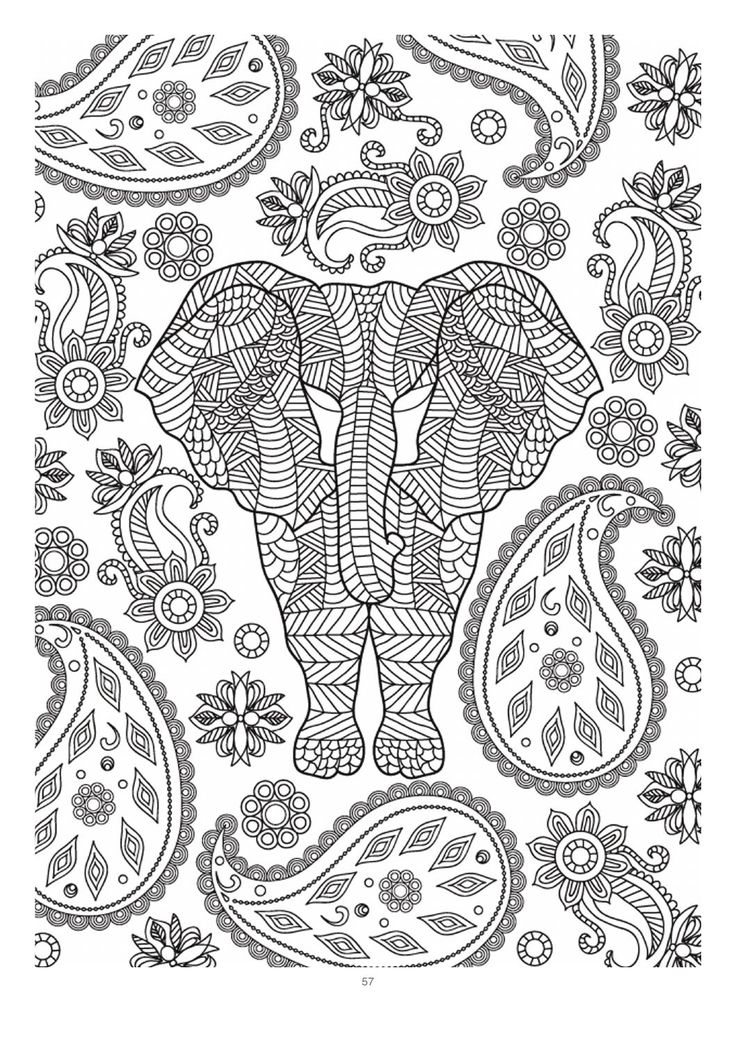 1000 images about adult colouring elephants zentangles on Elephant coloring book for adults