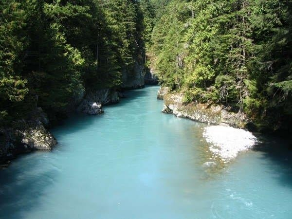 The upper Pitt river http://chadsfishingcharters.com/rivers-and-lakes/