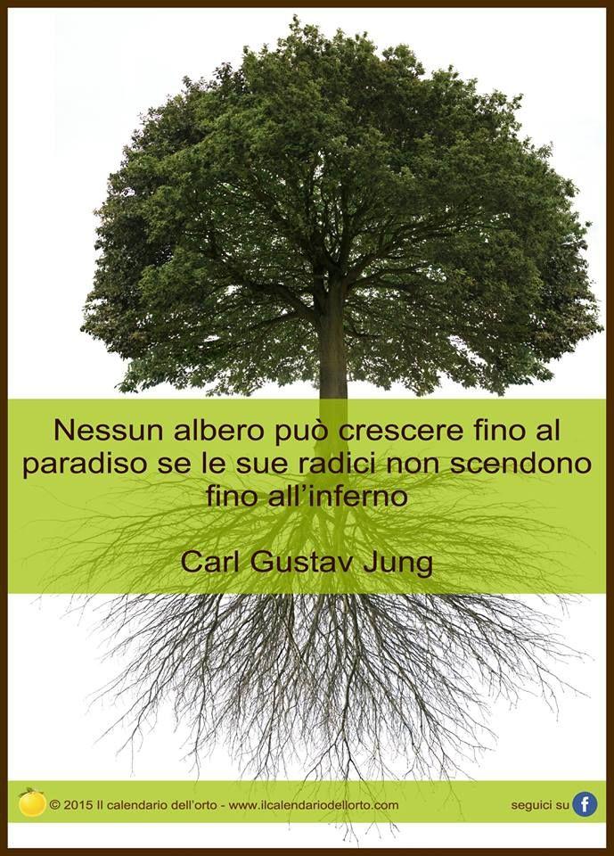 Nessun albero può crescere fino al paradiso se le sue radici non scendono fino all'inferno. Carl Gustav Jung