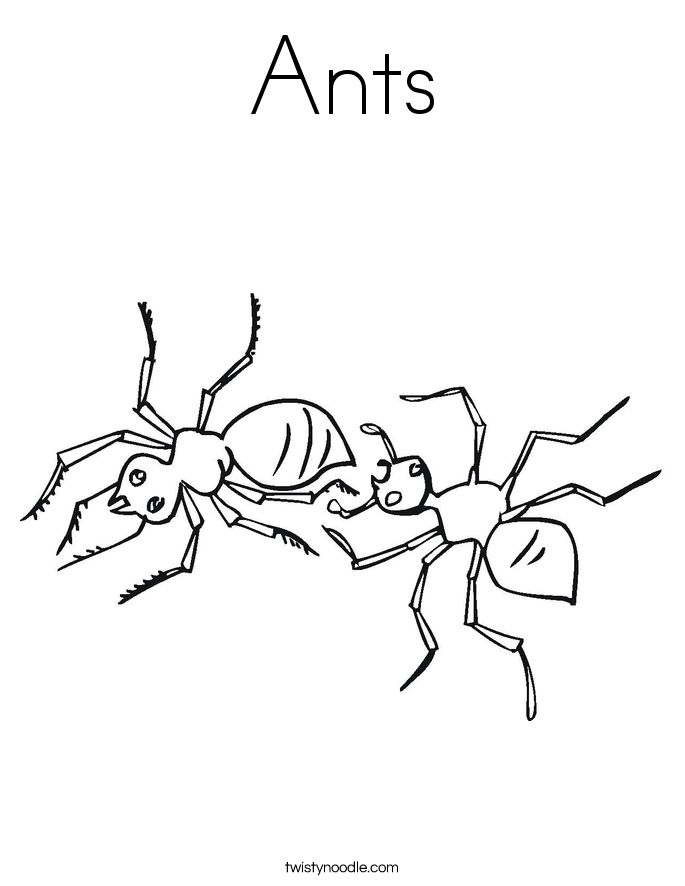 Bug Coloring Page X Kb Gif Insect Coloring Pages Bug Coloring