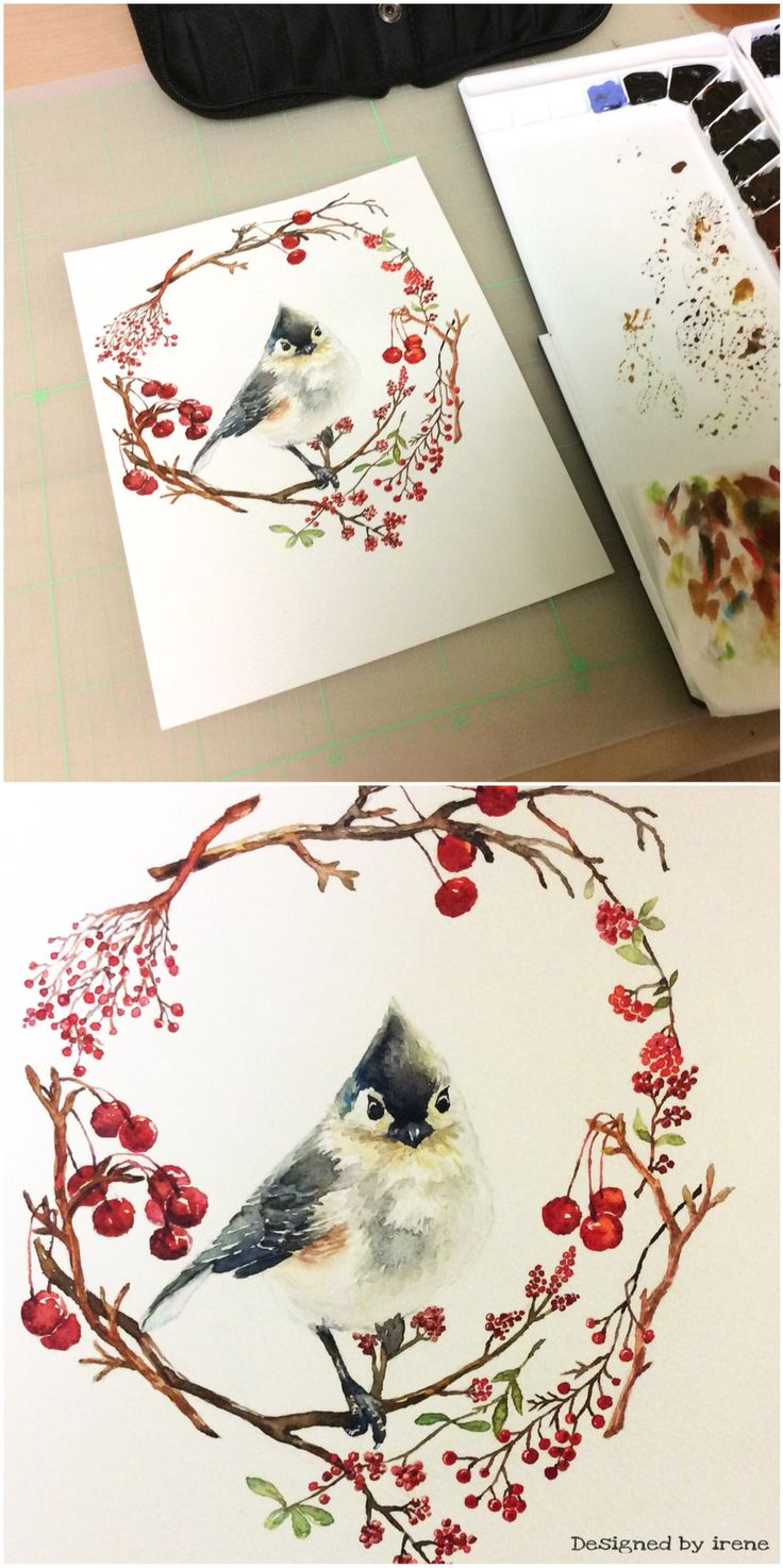Bird-겨울새❤️ 새 이미지 참고: http://rollo-christina.artistwebsites.com/featured/cute-winter-bird-tufted-titmouse-christina-rollo.html