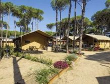 Lodge Luxe  Accommodation for 4/5 and for 6/7 persons