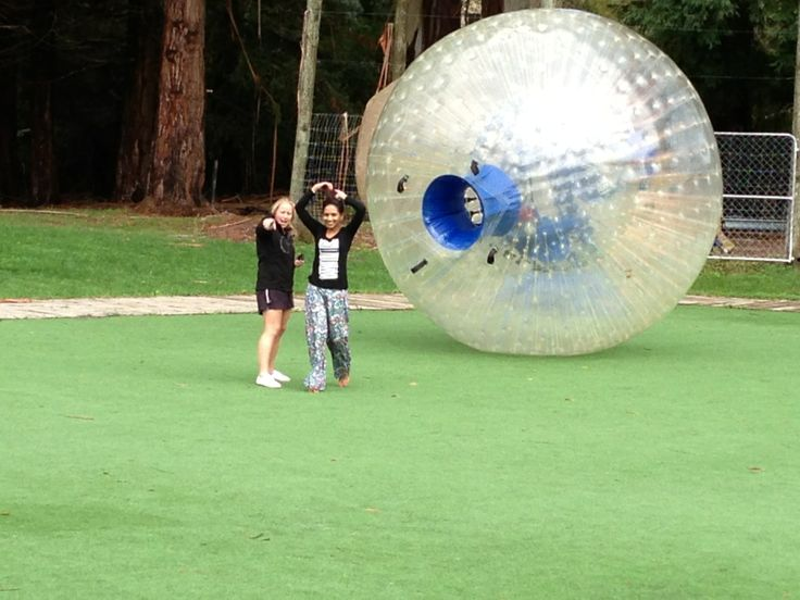 Grab NZ's ORIGINAL Globe Riding Experience at ZORB Rotorua.