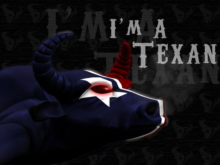 17 Best Images About Houston Texans On Pinterest