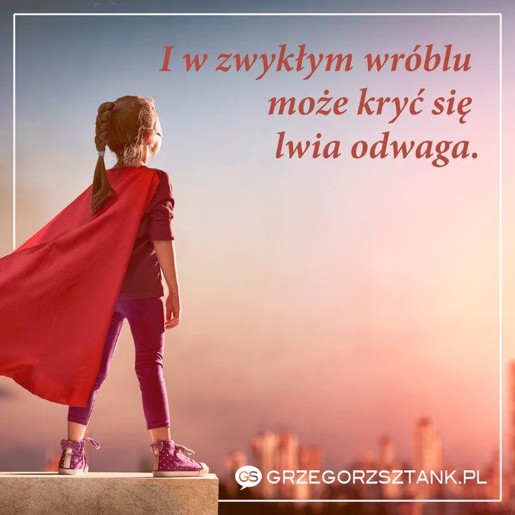 Do zwycięstwa potrzeba nam odwagi, odwagi i jeszcze raz odwagi! #motywacja #odwaga #lew #inspiracja