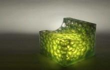 Chairs | Design Idea & Image Galleries on Dornob