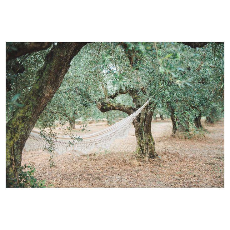 Love @girlsofhonour for sharing this romantic couple shoot I shot in an olive grove in Greece  http://ift.tt/2m1VhjO  #couplesshoot #loveshoot #verloofd #engaged #weddingphotographergreece #weddingphotography #engagementshoot #verlovingsshoot  Creative direction and styling: Tahnee Sanders MUAH: Frantzeska Koukoula Dress: Free People Shot at: Boheme workshops Location: Olivegrove in Pílos Messinia Greece  #loveshoot #hangmat #coupleshoot #greece #travelgreece #weddingphotographygreece…