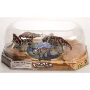 """Eco Dome Triceratops Family: Realistic 3 piece Dinosaur Figure Set by Wild Republic. $5.98. Set of 2 Adult and 1 Youth Dinosaurs. From the Eco-Dome Dinosaur Collection by Wild Republic. Eco Dome Triceratops Family. Packaging: Retail Display Dome. Size: Up to 3.5 inches long. Spark your imagination with this Wild Republic Family of Triceraptors Dinosaurs. Eco Dome Wildlife collection Recommended age 5+ Figures are approx 3.5"""" tall (varies)"""