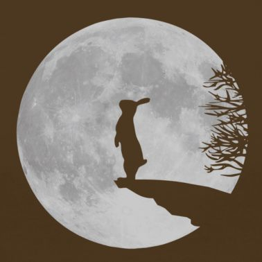 #Hare and the #Moon via @Brigitte Coleman