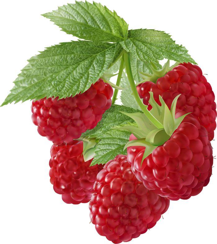 Днем рождения, ягода в картинках для детей