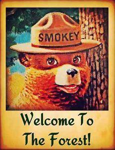 vintage pictures forest service cabins | ... BEAR-WELCOME-SIGN-MADE-IN-USA-U-S-FOREST-SERVICE-CABIN-RUSTIC-VINTAGE
