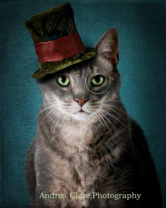 Pet Photography Surreal Fine Art Photograph Cat Photo Art ...