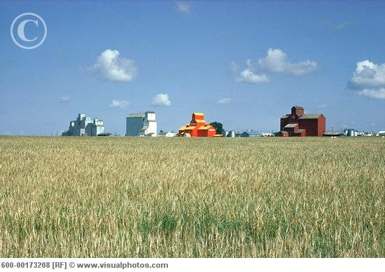 Saskatchewan is one of the prairie provinces...and there are LOTS of flat fields of grain as far as the eye can see !