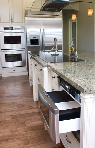 Ladies And Gentleman I Give You My Dream Kitchen With My Appliance Wish  List.