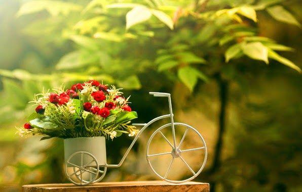 foto de triciclo de decoración