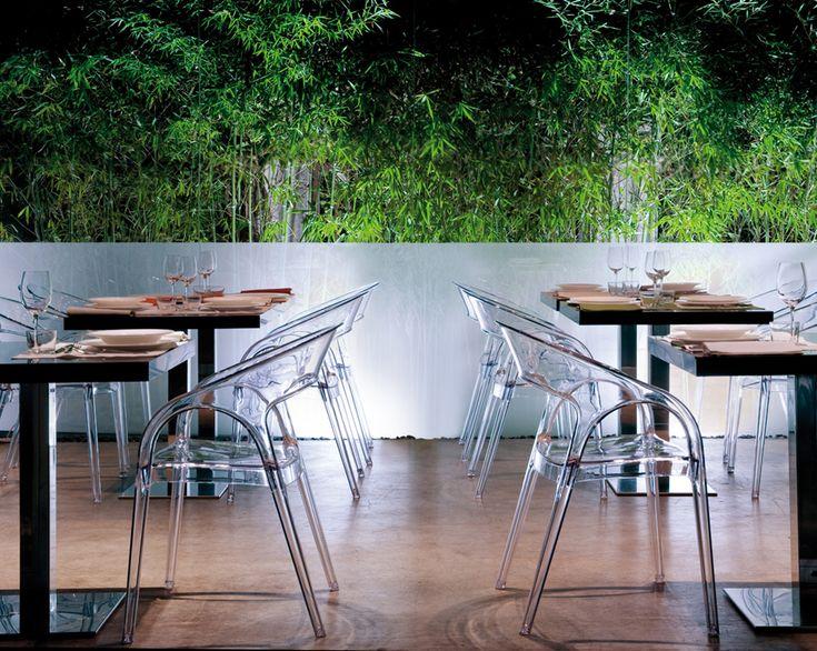 Transparentní plastová křesílka GOSSIP, stoly INOX, výrobce Pedrali