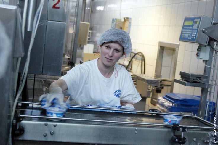 Chociaż produkcja jest w większości zautomatyzowana to i tak finalnie za jakość serków odpowiadają nasi oddani pracownicy.