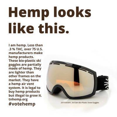 Hemp Plastic