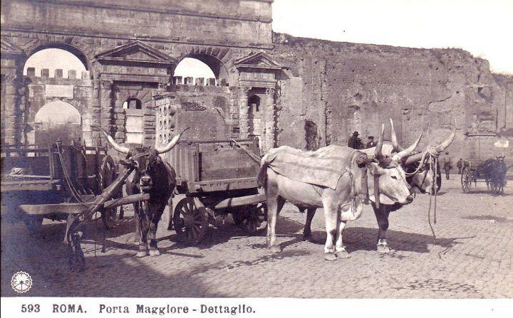 Porta Maggiore con i buoi Anno: circa 1900