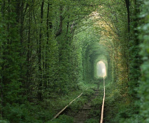 Le tunnel de l'amour de Klevan (Ukraine)